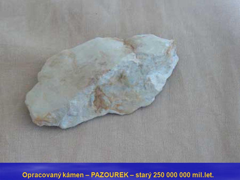 Opracovaný kámen – PAZOUREK – starý 250 000 000 mil.let.