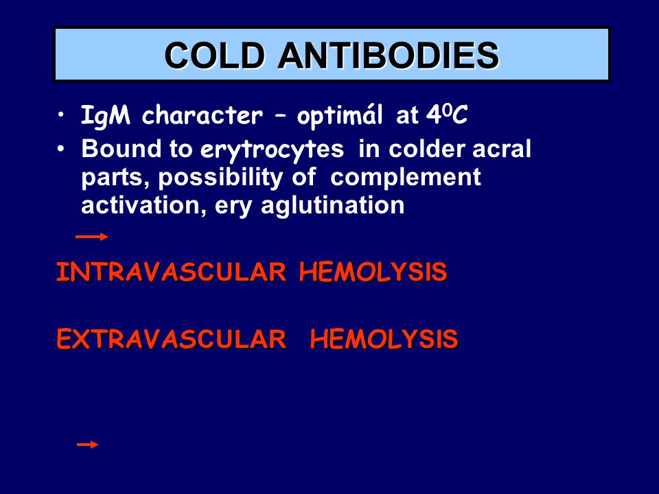 COLD ANTIBODIES IgM character – optimál at 40C