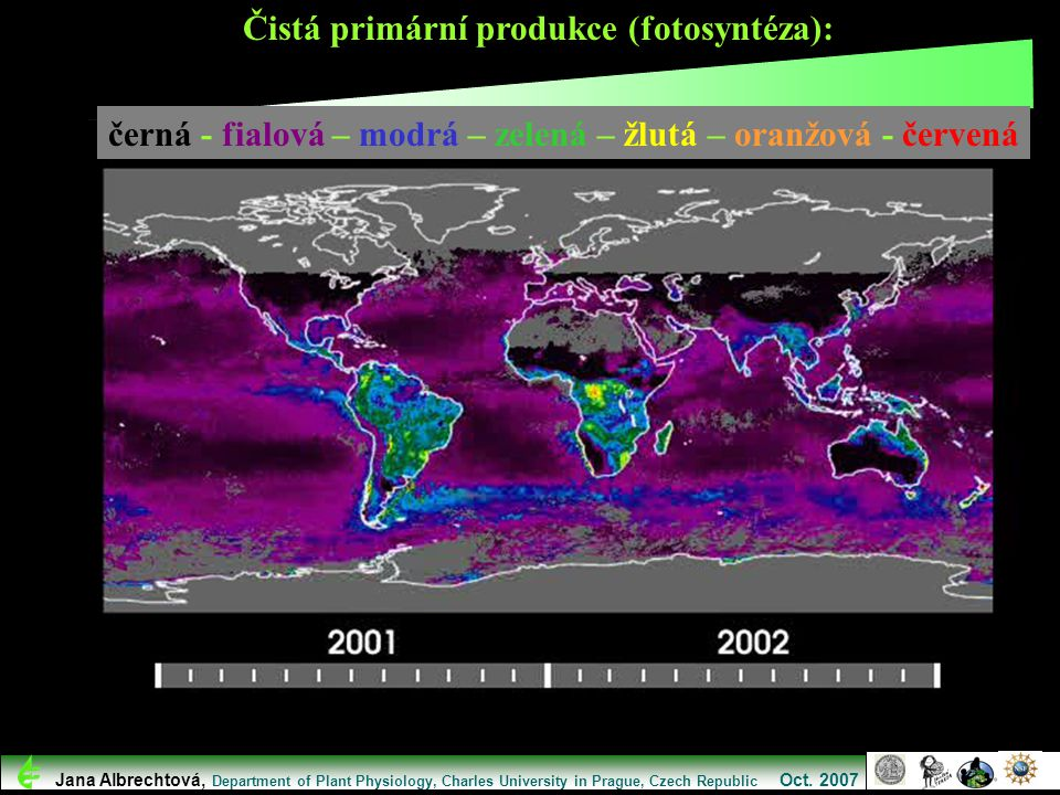 Čistá primární produkce (fotosyntéza):