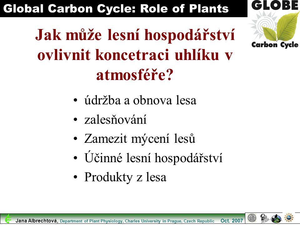 Jak může lesní hospodářství ovlivnit koncetraci uhlíku v atmosféře