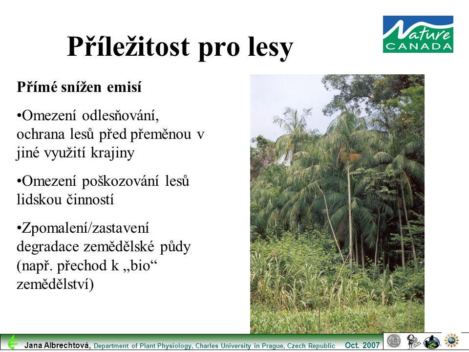 Příležitost pro lesy Přímé snížen emisí