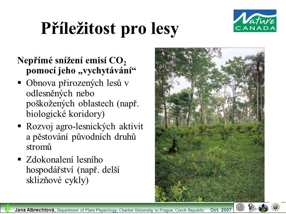 """Příležitost pro lesy Nepřímé snížení emisí CO2 pomocí jeho """"vychytávání"""