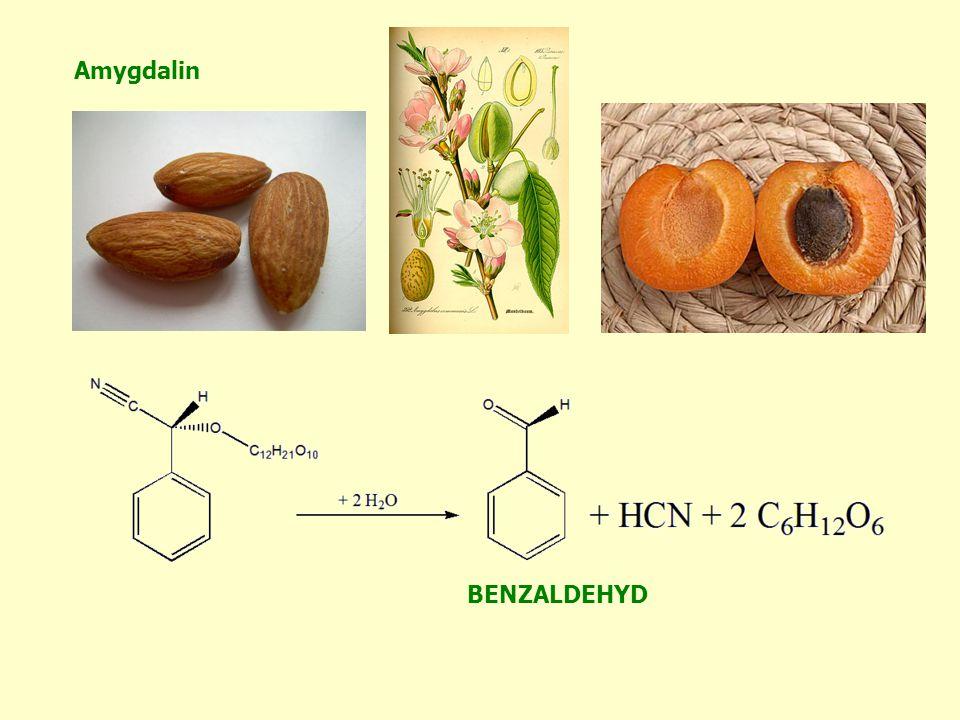 Amygdalin BENZALDEHYD