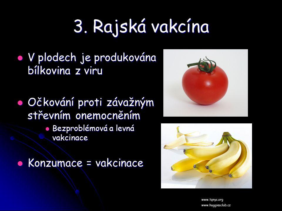 3. Rajská vakcína V plodech je produkována bílkovina z viru