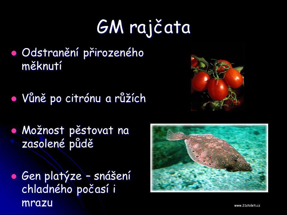GM rajčata Odstranění přirozeného měknutí Vůně po citrónu a růžích