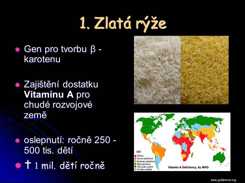 1. Zlatá rýže  1 mil. dětí ročně Gen pro tvorbu β - karotenu