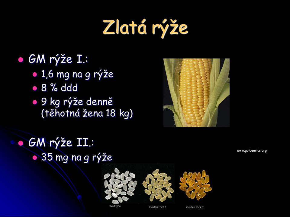 Zlatá rýže GM rýže I.: GM rýže II.: 1,6 mg na g rýže 8 % ddd