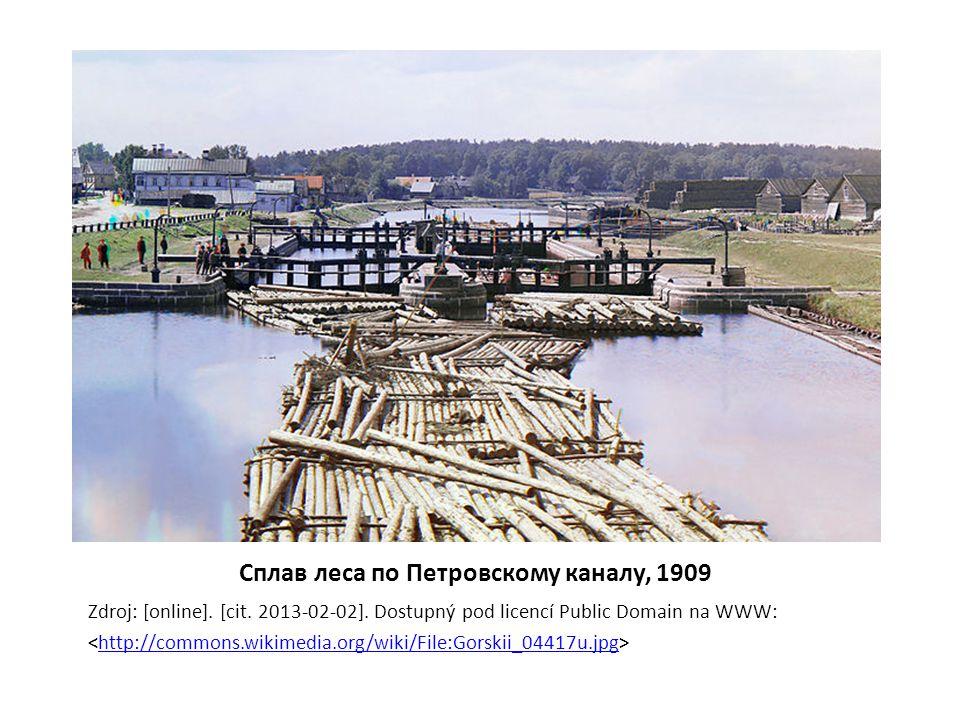 Сплав леса по Петровскому каналу, 1909