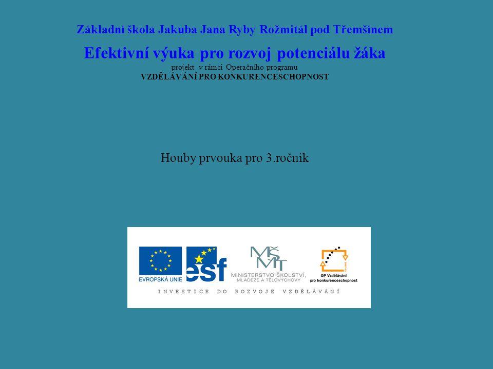 Efektivní výuka pro rozvoj potenciálu žáka