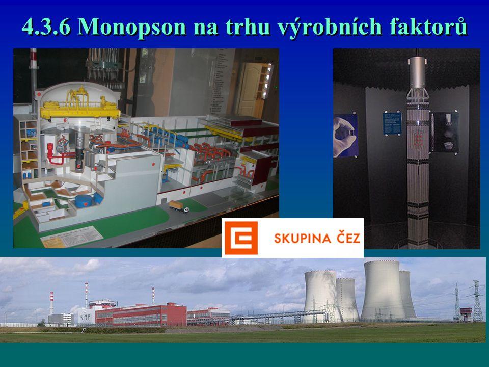 4.3.6 Monopson na trhu výrobních faktorů