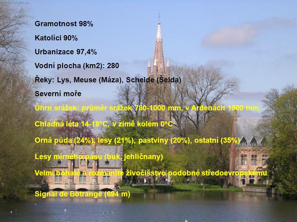 Gramotnost 98% Katolíci 90% Urbanizace 97,4% Vodní plocha (km2): 280. Řeky: Lys, Meuse (Máza), Schelde (Šelda)