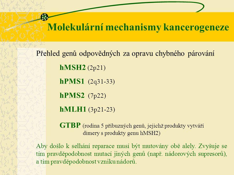 Molekulární mechanismy kancerogeneze
