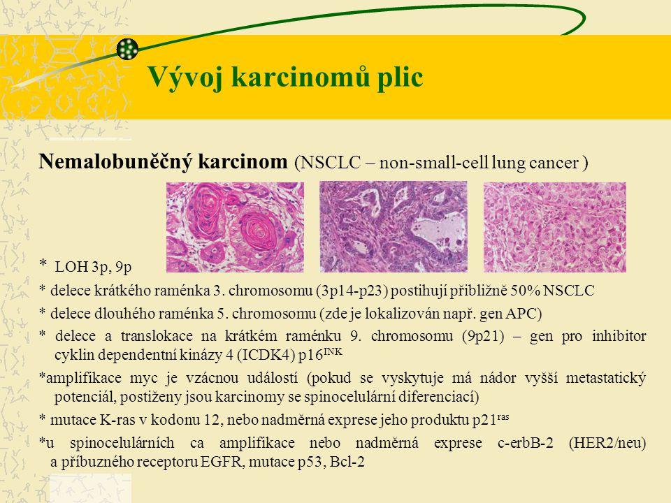 Vývoj karcinomů plic Nemalobuněčný karcinom (NSCLC – non-small-cell lung cancer ) * LOH 3p, 9p.