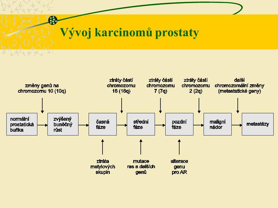 Vývoj karcinomů prostaty