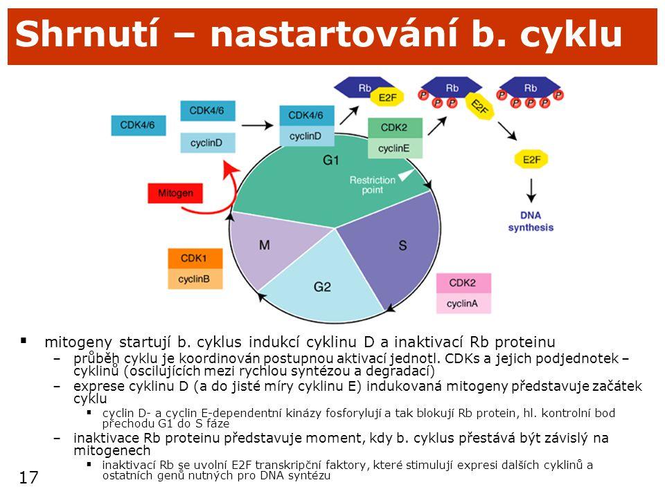 Shrnutí – nastartování b. cyklu