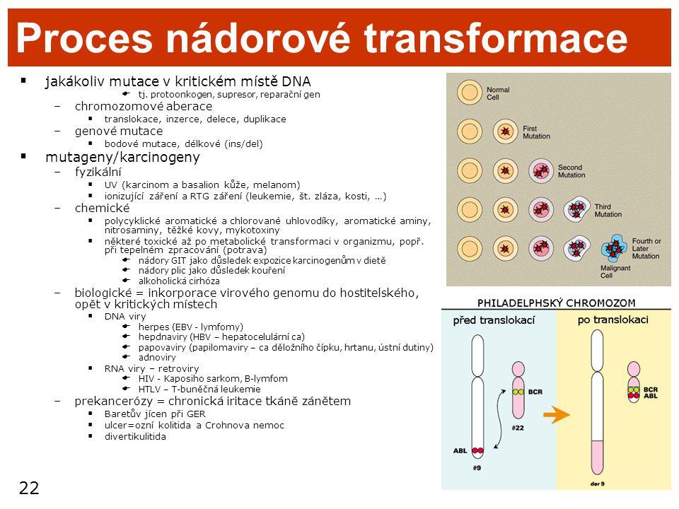 Proces nádorové transformace