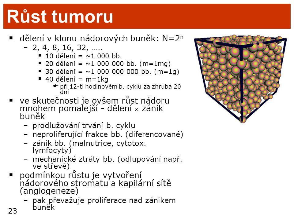 Růst tumoru dělení v klonu nádorových buněk: N=2n