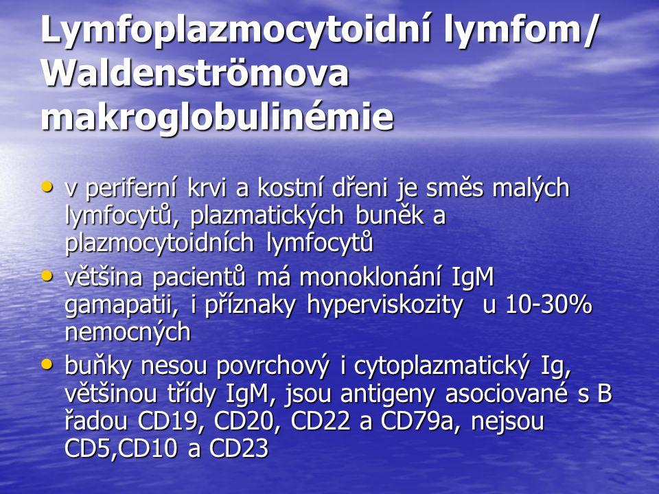 Lymfoplazmocytoidní lymfom/ Waldenströmova makroglobulinémie