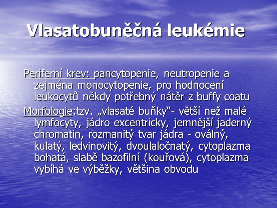 Vlasatobuněčná leukémie