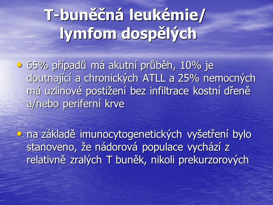 T-buněčná leukémie/ lymfom dospělých