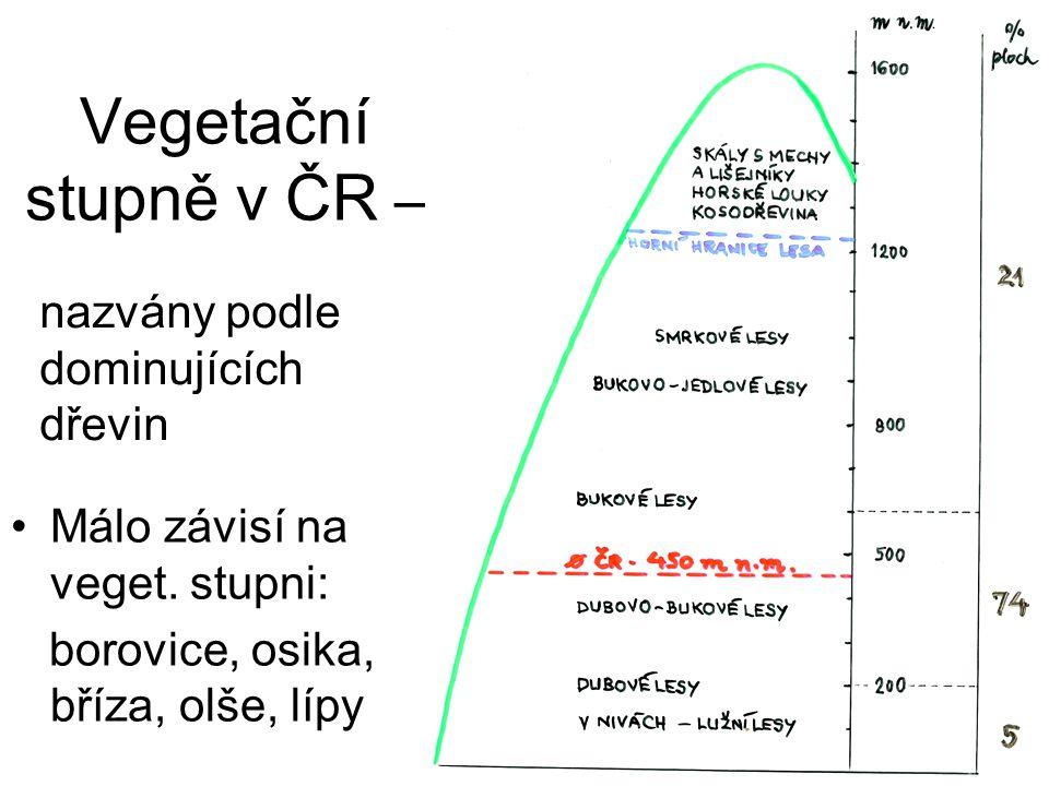 Vegetační stupně v ČR – nazvány podle dominujících dřevin