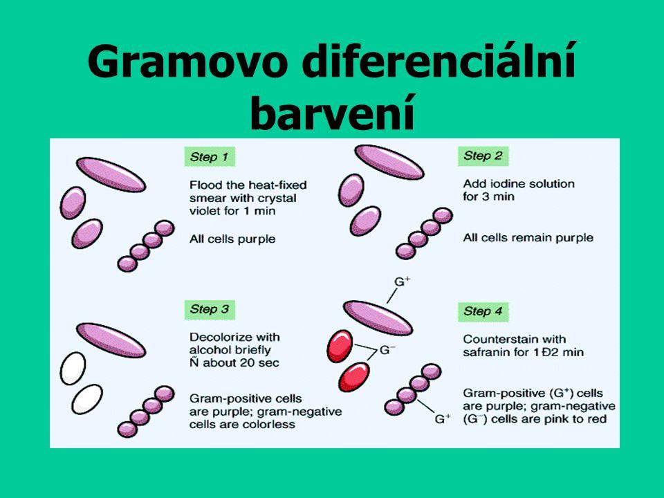 Gramovo diferenciální barvení
