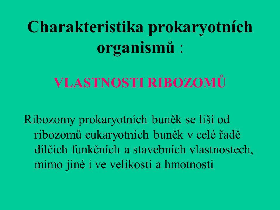 Charakteristika prokaryotních organismů :