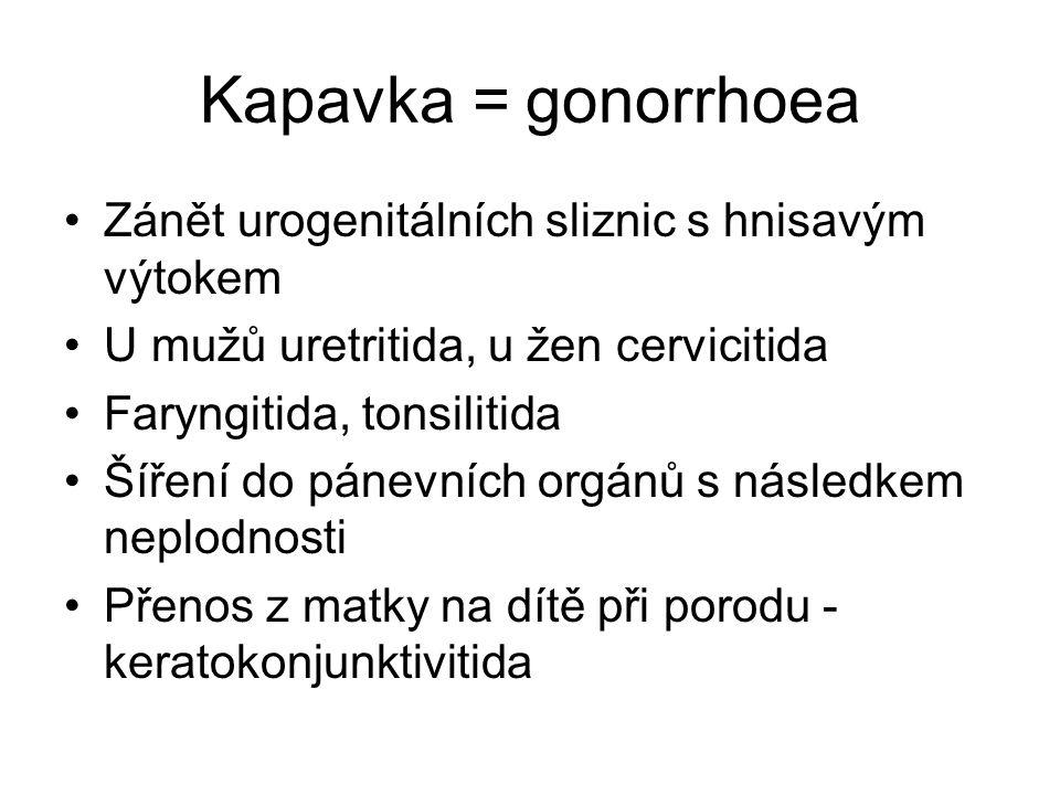 Kapavka = gonorrhoea Zánět urogenitálních sliznic s hnisavým výtokem
