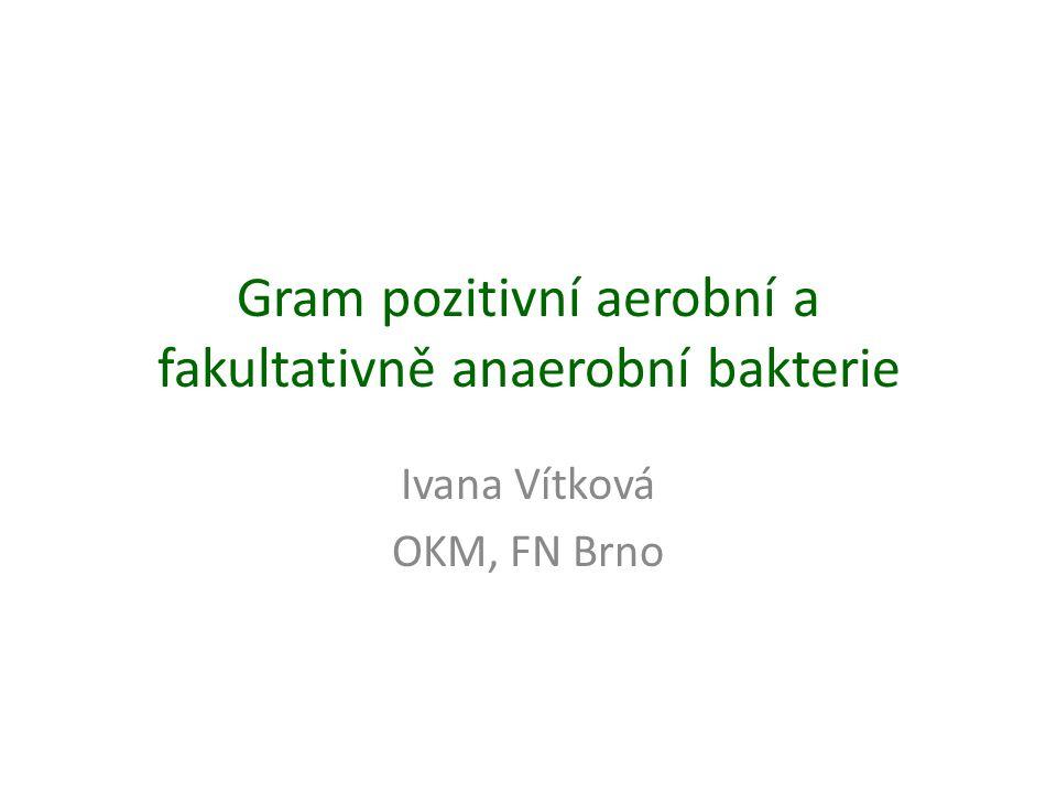 Gram pozitivní aerobní a fakultativně anaerobní bakterie