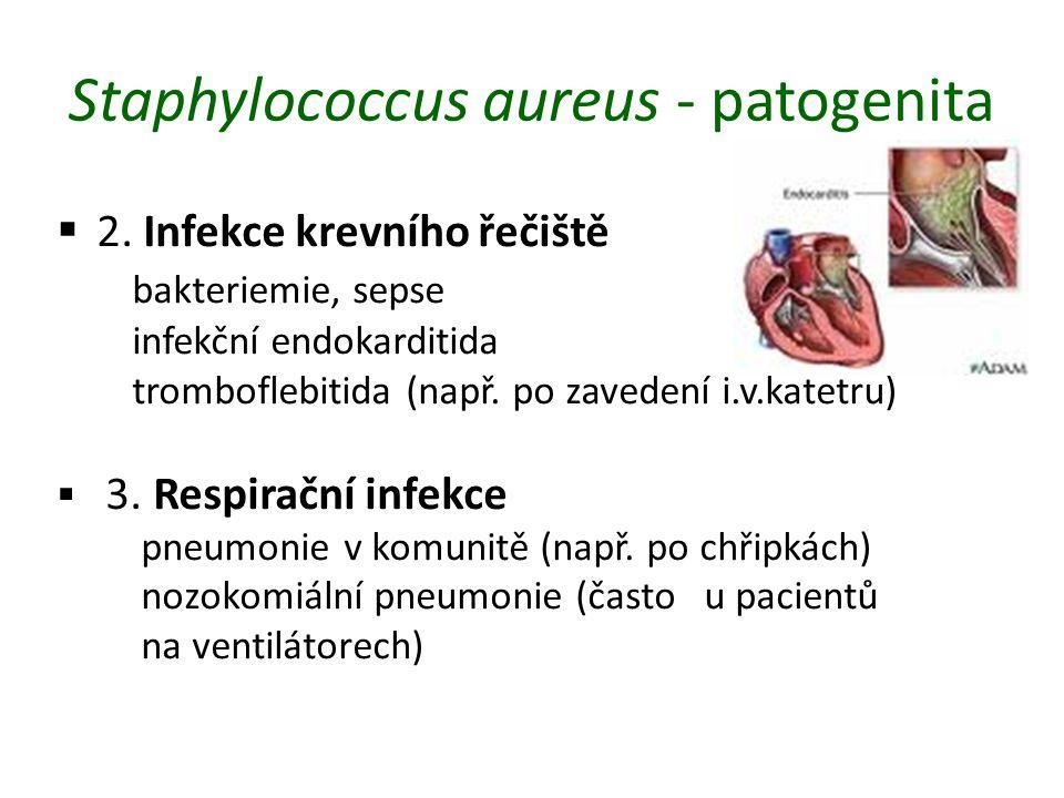Staphylococcus aureus - patogenita