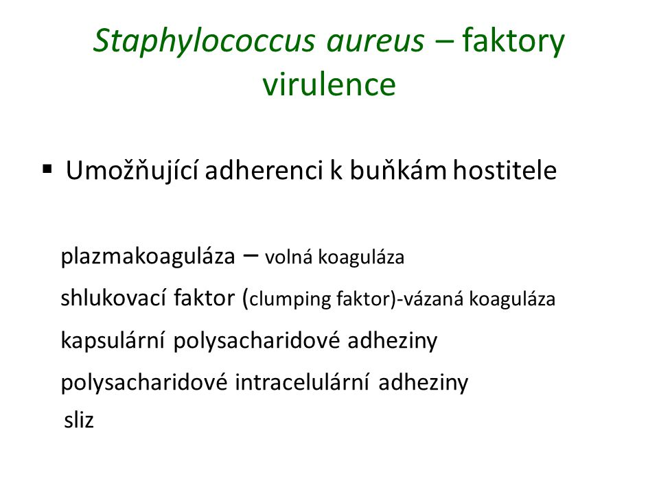 Staphylococcus aureus – faktory virulence