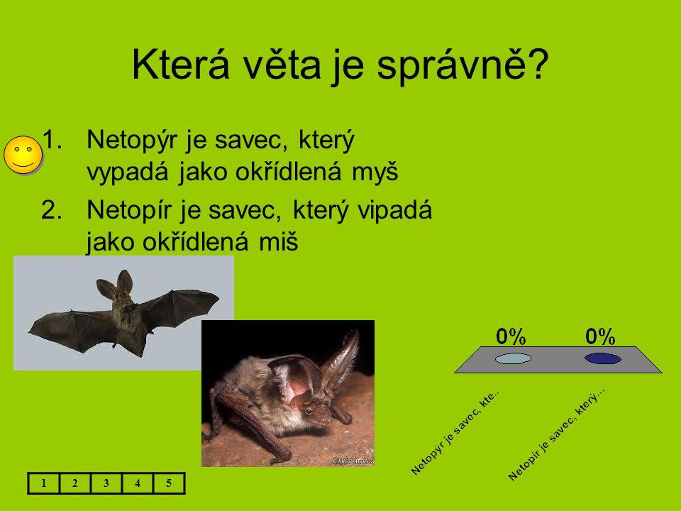 Která věta je správně Netopýr je savec, který vypadá jako okřídlená myš. Netopír je savec, který vipadá jako okřídlená miš.