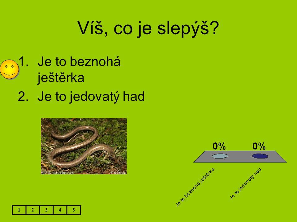Víš, co je slepýš Je to beznohá ještěrka Je to jedovatý had 1 2 3 4 5