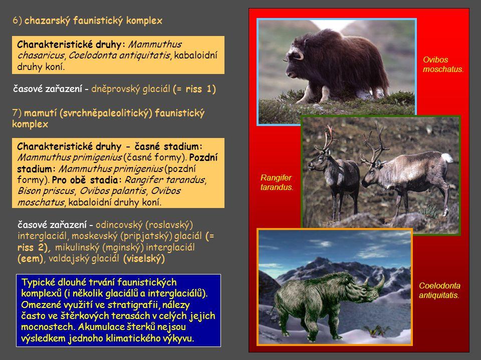 6) chazarský faunistický komplex