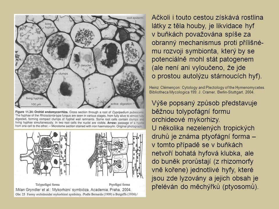 Ačkoli i touto cestou získává rostlina látky z těla houby, je likvidace hyf v buňkách považována spíše za obranný mechanismus proti přílišné-mu rozvoji symbionta, který by se potenciálně mohl stát patogenem (ale není ani vyloučeno, že jde o prostou autolýzu stárnoucích hyf).