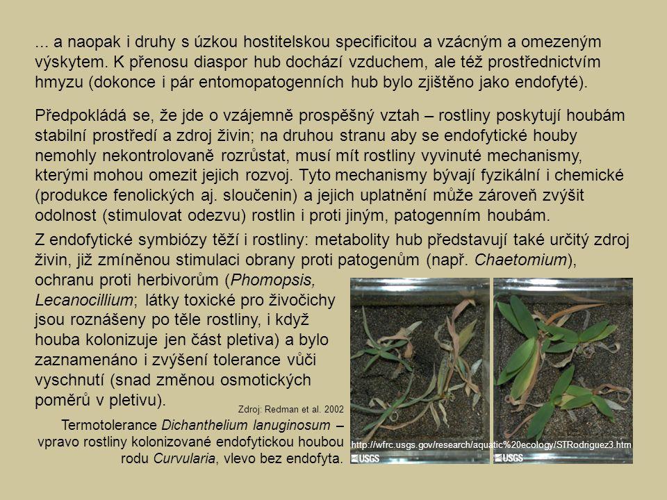 Lecanocillium; látky toxické pro živočichy