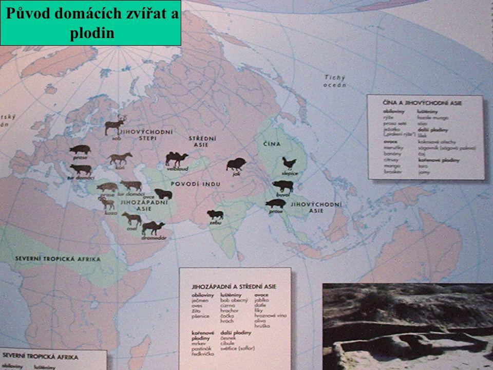 Původ domácích zvířat a plodin