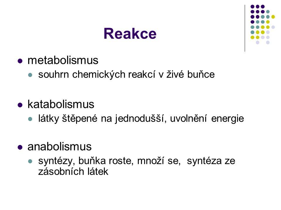 Reakce metabolismus katabolismus anabolismus