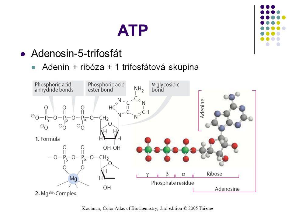 ATP Adenosin-5-trifosfát Adenin + ribóza + 1 trifosfátová skupina