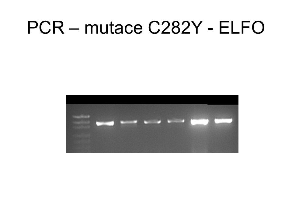 PCR – mutace C282Y - ELFO