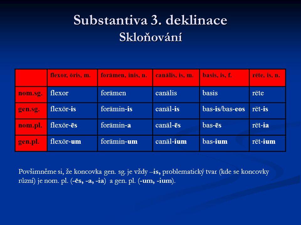 Substantiva 3. deklinace Skloňování