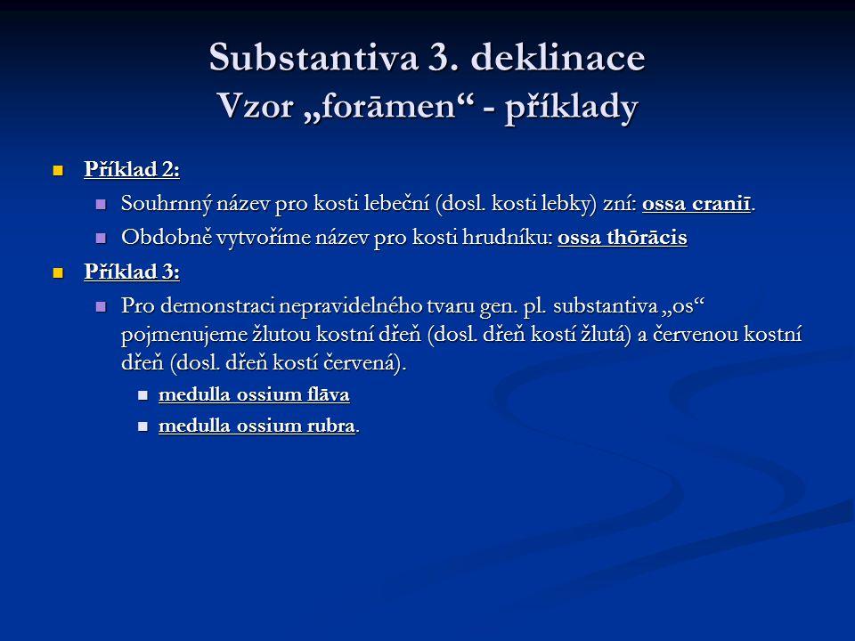 """Substantiva 3. deklinace Vzor """"forāmen - příklady"""