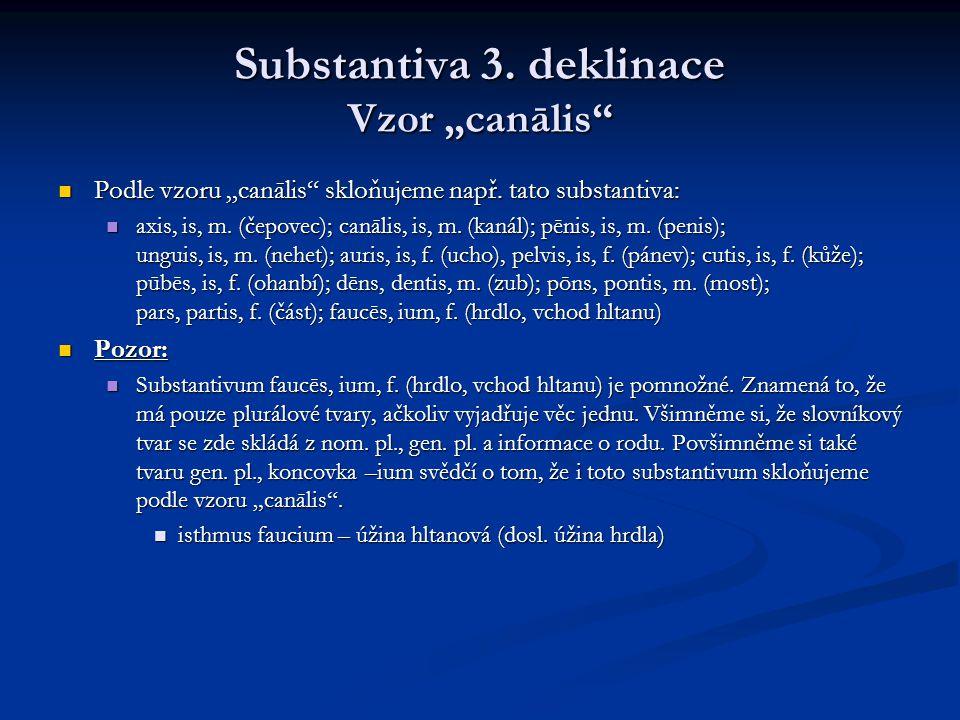 "Substantiva 3. deklinace Vzor ""canālis"