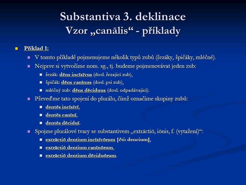 """Substantiva 3. deklinace Vzor """"canālis - příklady"""