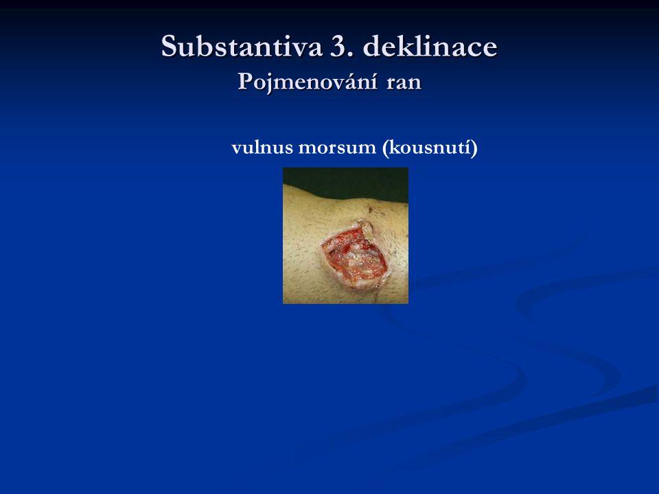 Substantiva 3. deklinace Pojmenování ran