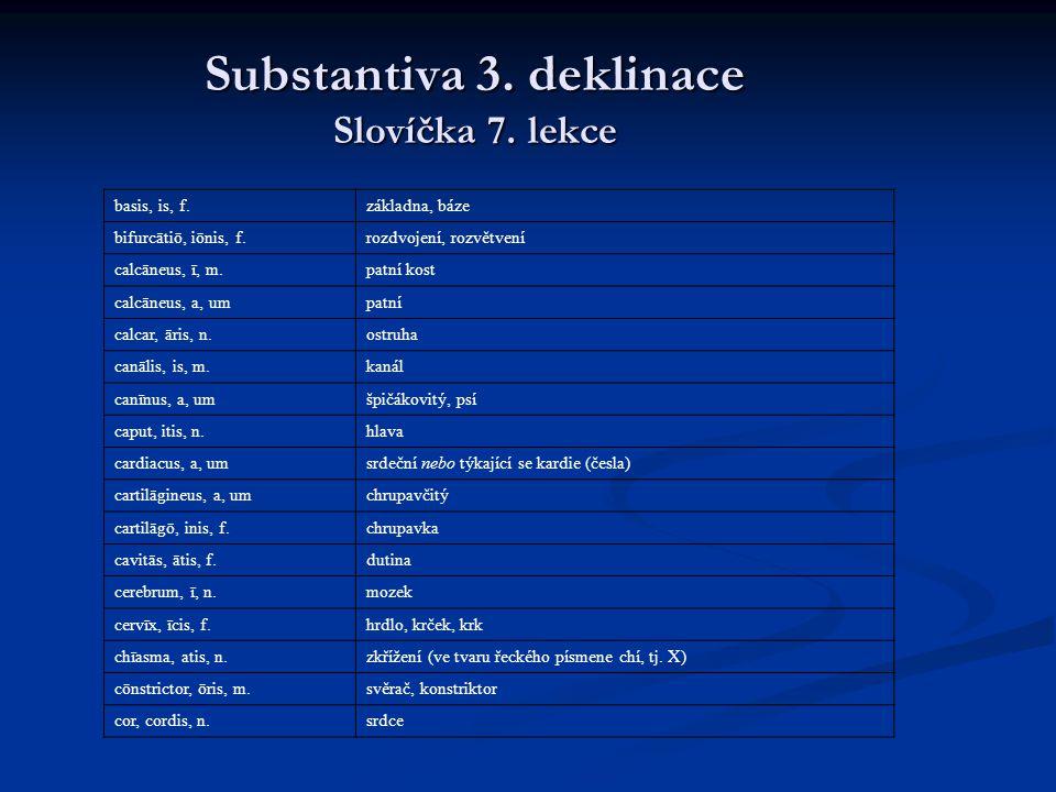 Substantiva 3. deklinace Slovíčka 7. lekce