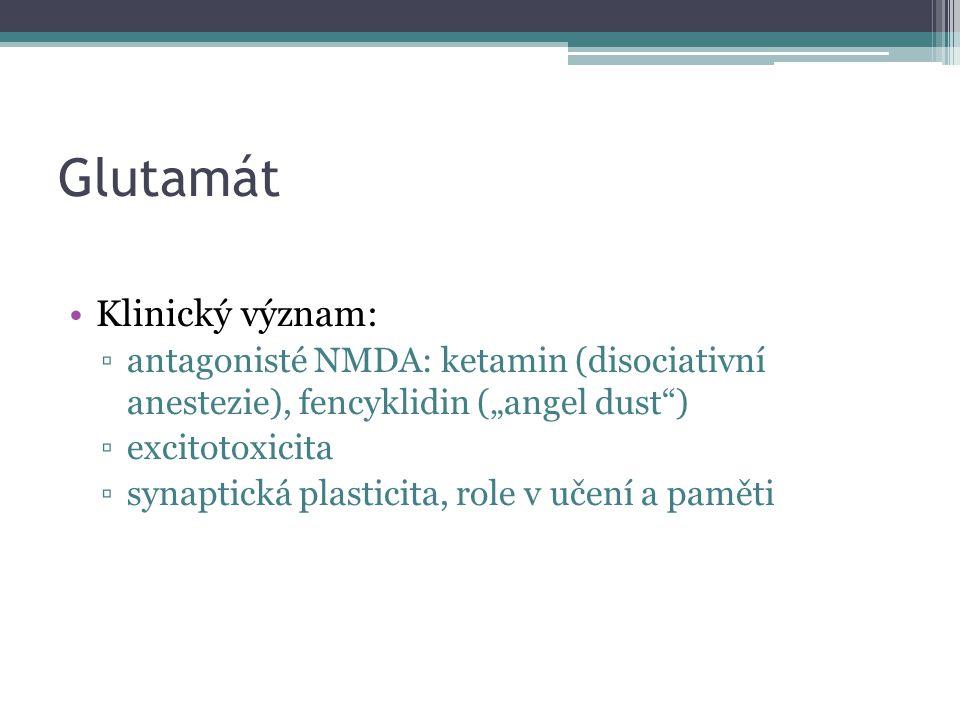 Glutamát Klinický význam: