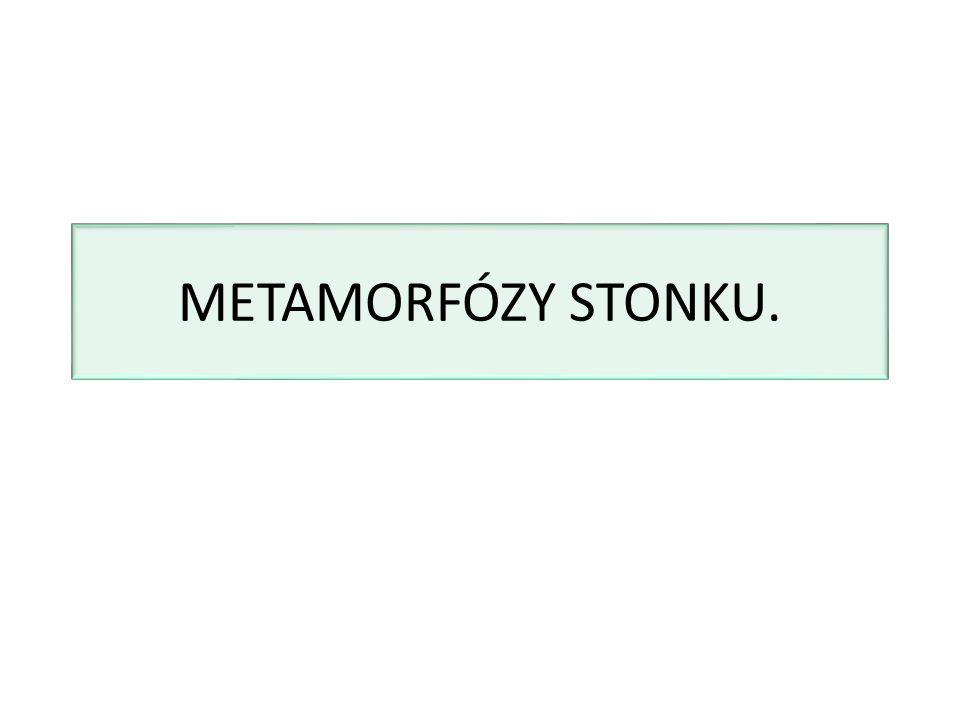 METAMORFÓZY STONKU.