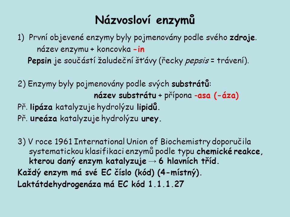 Názvosloví enzymů První objevené enzymy byly pojmenovány podle svého zdroje. název enzymu + koncovka -in.