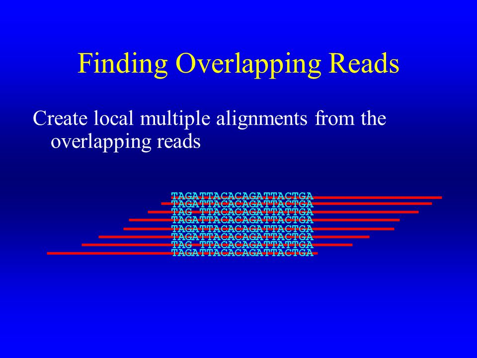 Finding Overlapping Reads